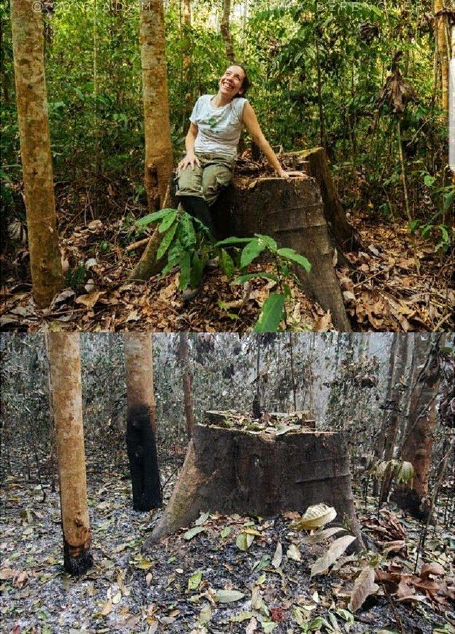 Pesquisadora da Universidade de Oxford, a brasileira Erika Berenguer estuda os efeitos do fogo na região amazônica (Foto: ERIKA BERENGUER)