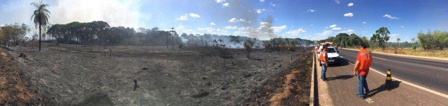 O último incêndio queimou uma área de aproximadamente quatro quilômetros, às margens da BR-153 ( Foto: Divulgação)