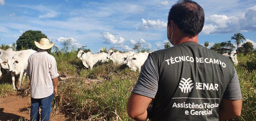 Assistência Técnica e Gerencial do Senar faz pecuarista melhorar pastagens de propriedade rural em Tocantinópolis (Foto: Divulgação)