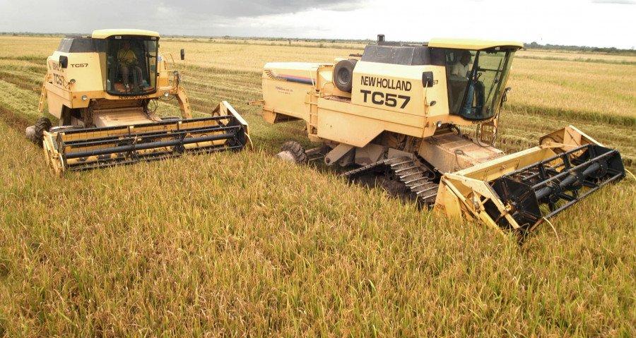 O TO ocupa o posto de terceiro maior produtor de arroz do país, com uma produção estimada para a Safra 2020/2021 de 692,2 mil toneladas