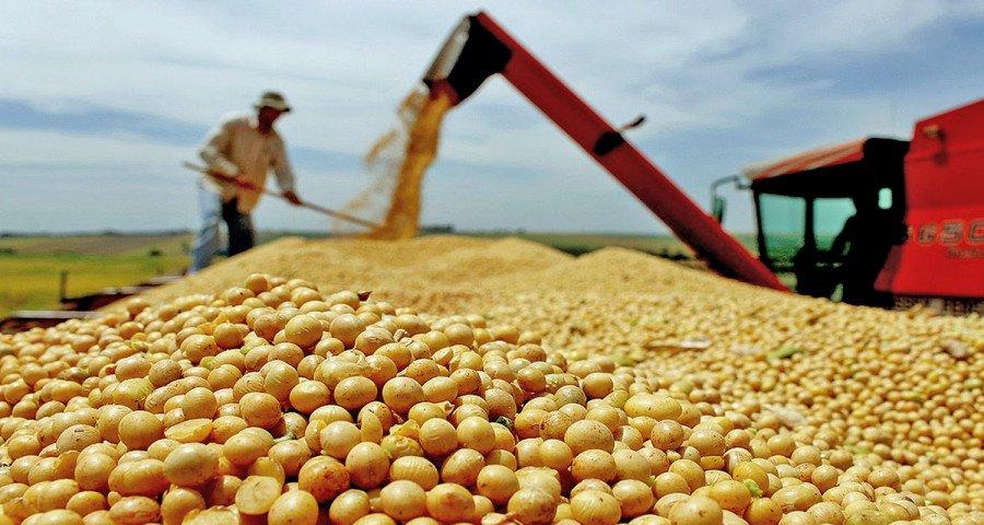 A soja é o carro-chefe da exportação tocantinense, só neste ano, foram mais de 2,4 milhões de toneladas exportadas