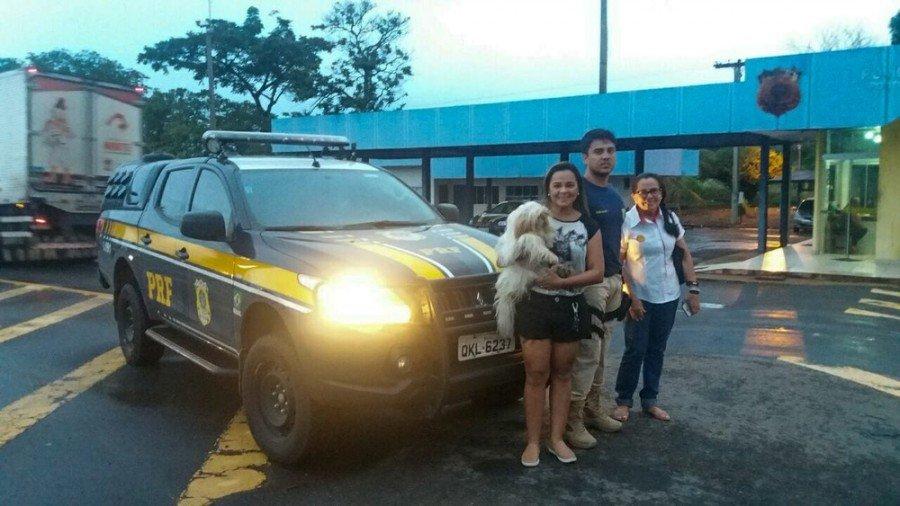 Dona do animal foi até Guaraí para recuperar cadela