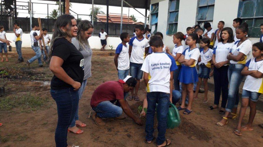 Plantio de mudas nas escolas de Araguatins