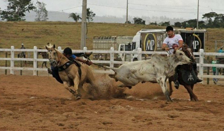 Vaquejada acontecerá na fazenda Vale do Boi, em Paraíso do Tocantins (Foto: Arquivo)