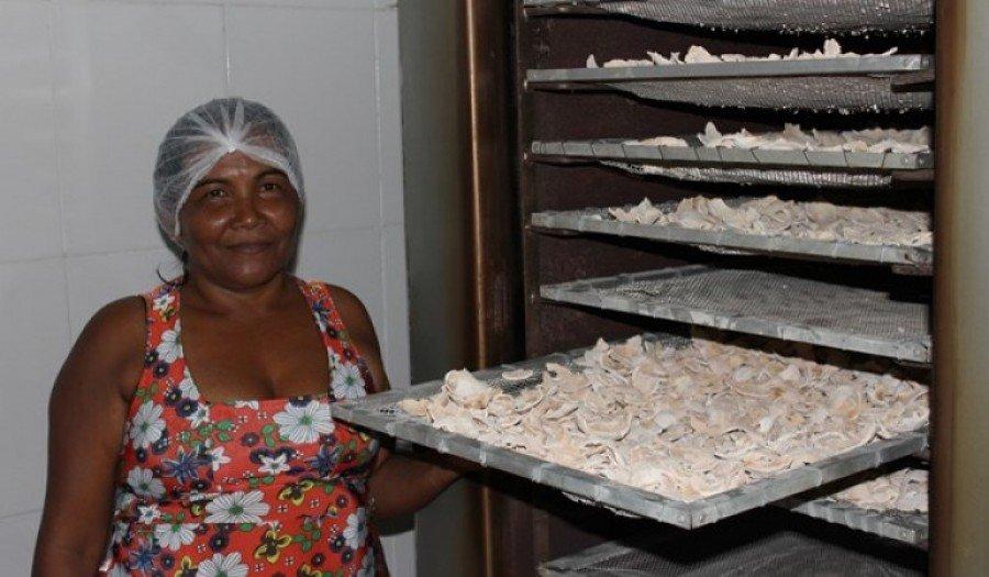 Quebradeiras de coco participam de ato em Palmas (Foto: Divulgação MIQCB)