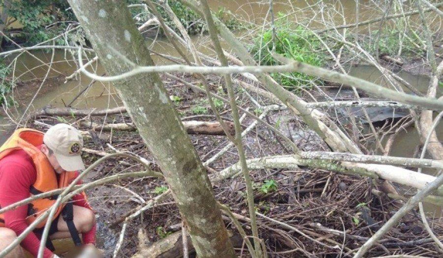 Bombeiros encontraram o corpo do homem afogado em Tocantinópolis após três dias de buscas
