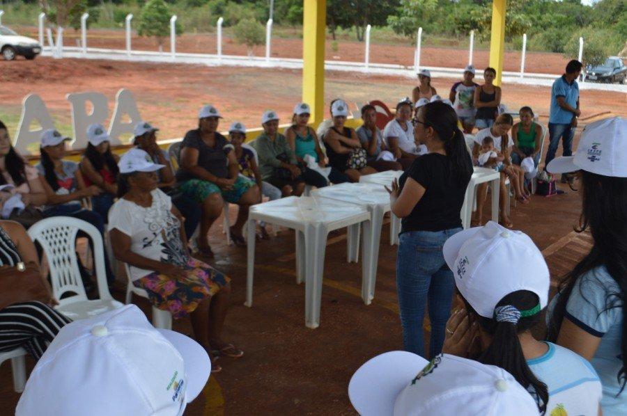 Sebrae e parceiros preparam 12ª Edição Feapa