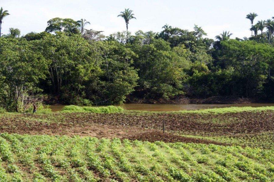 Código Florestal trouxe, entre outras normativas, a implantação do Cadastro Ambiental Rural (CAR) em todo o território nacional (Foto: Fernando Alves)