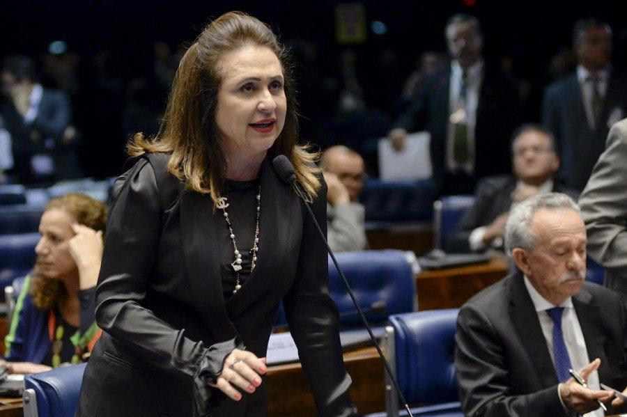 Plenário do Senado aprovou projeto que distribui recursos da Lei Kandir (Foto: Divulgação Senado)