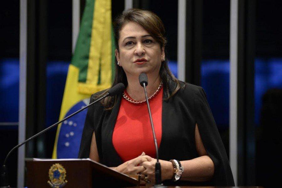 Senadora afirmou que setor de carnes brasileiro será prejudicado por vaidade, arrogância e abuso de autoridade de um pequeno grupo da PF