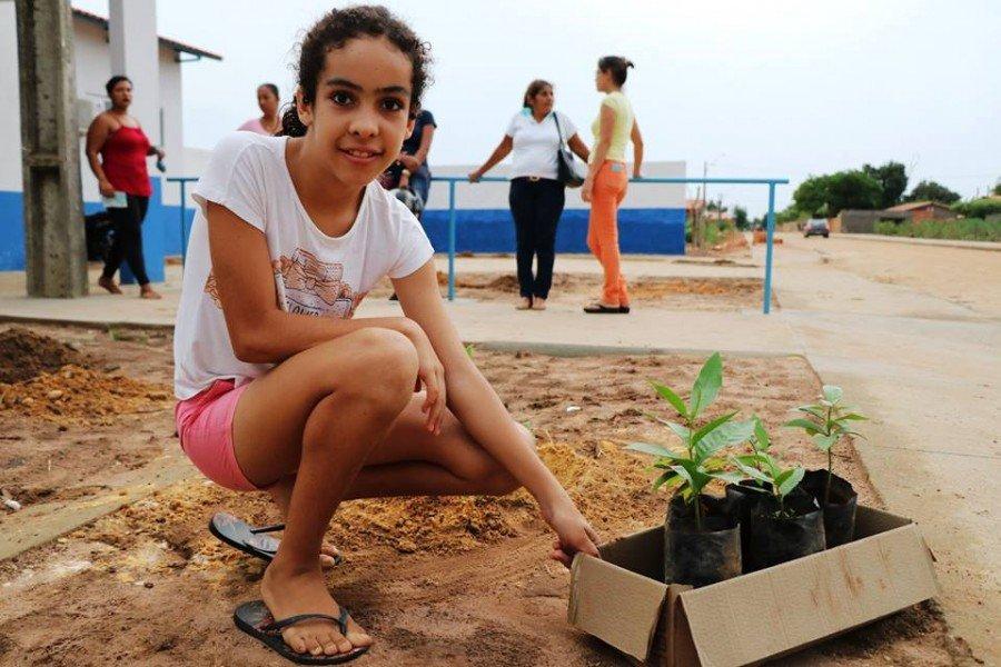 Plantio de mudas é realizado no perímetros urbano de Sampaio