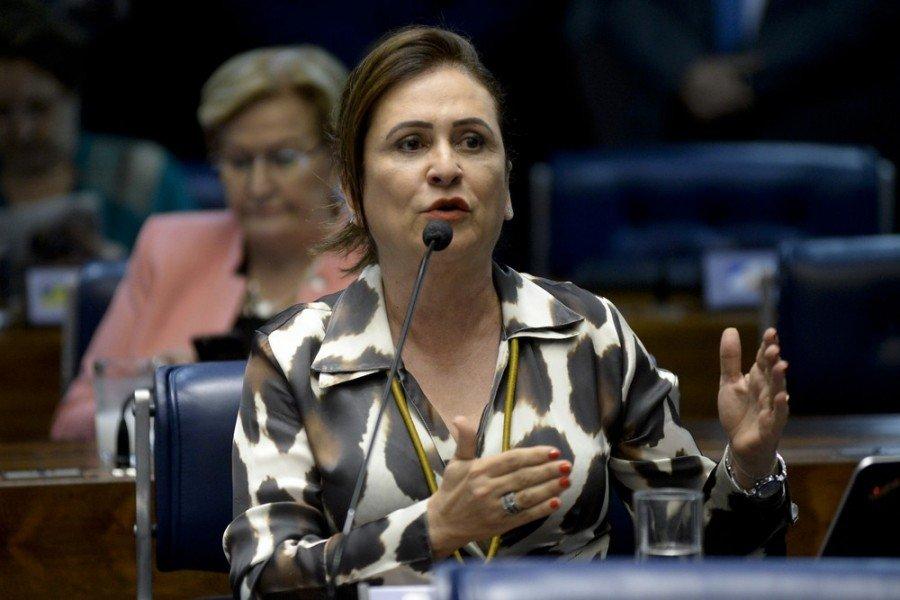Senadora Kátia Abreu (Foto: Jefferson Rudy / Agência Senado)