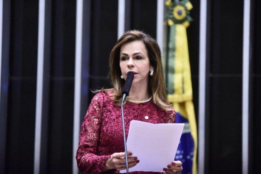 Deputada Professora Dorinha (Democratas/TO)