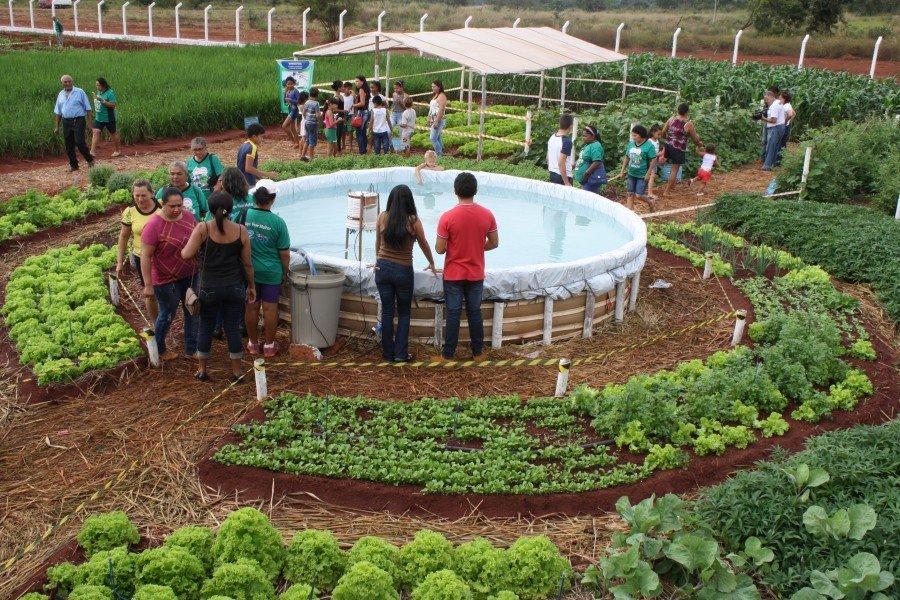 O foco central da Feapa é promover o desenvolvimento sustentável regional, por meio do fortalecimento da agricultura familiar