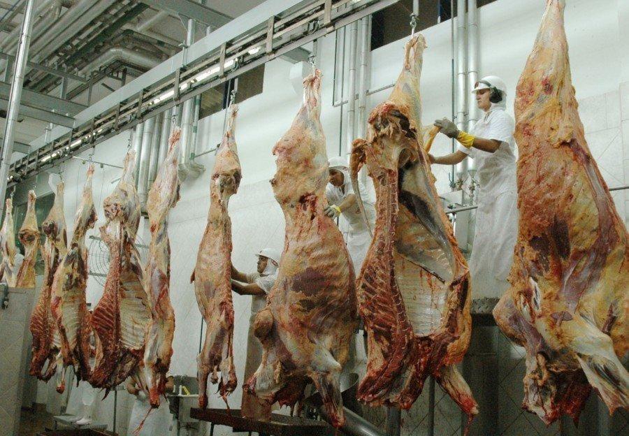 Os frigoríficos serão construídos em Ananás e em mais seis municípios do TO
