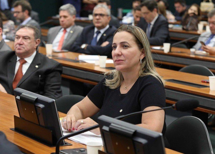 Deputada Federal Dulce Miranda indicou Palmas para sediar Seminário da Reforma Tributária