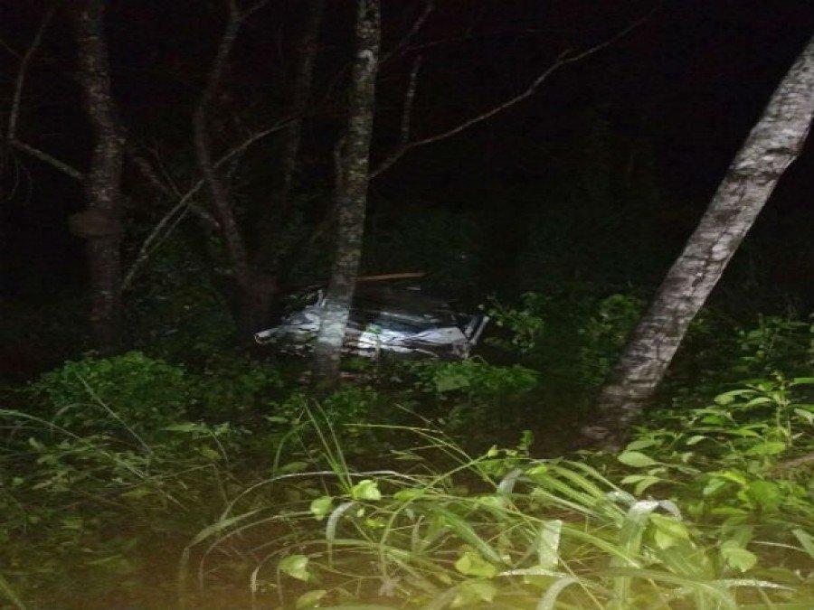 Quatro pessoas morrem após carro bater em vaca e capotar em rodovia (Foto: Divulgação)