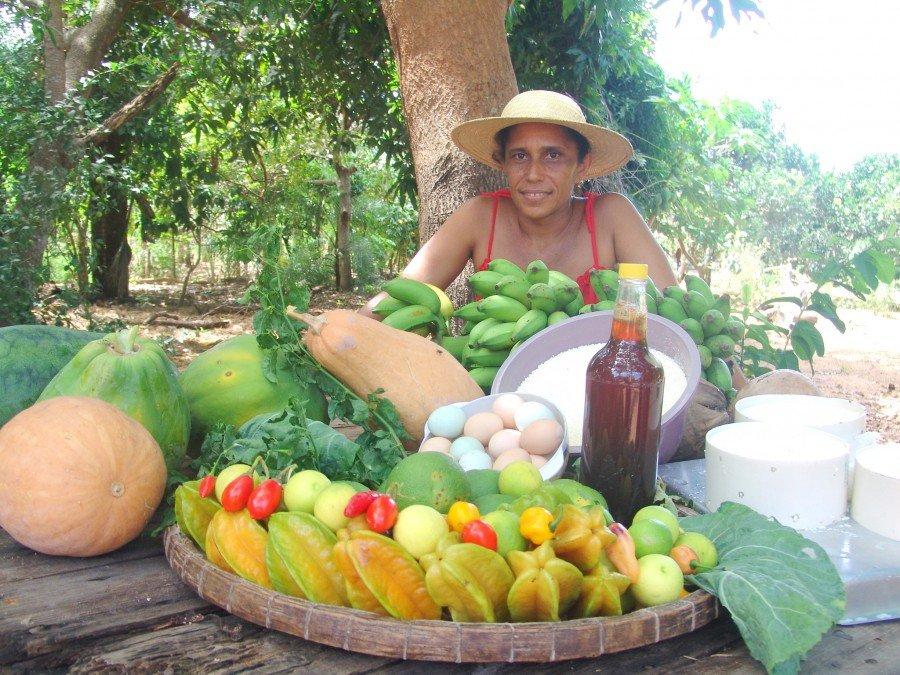 Cadastramento no Programa Aquisição de Alimentos vai até o dia 31 de dezembro (Foto: Ruraltins)