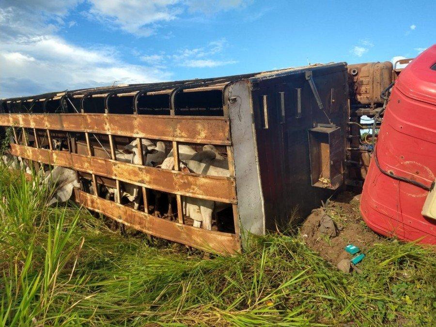 Segundo a polícia, a carreta saiu do município de Riachinho e seguia para um frigorífico de Araguaína