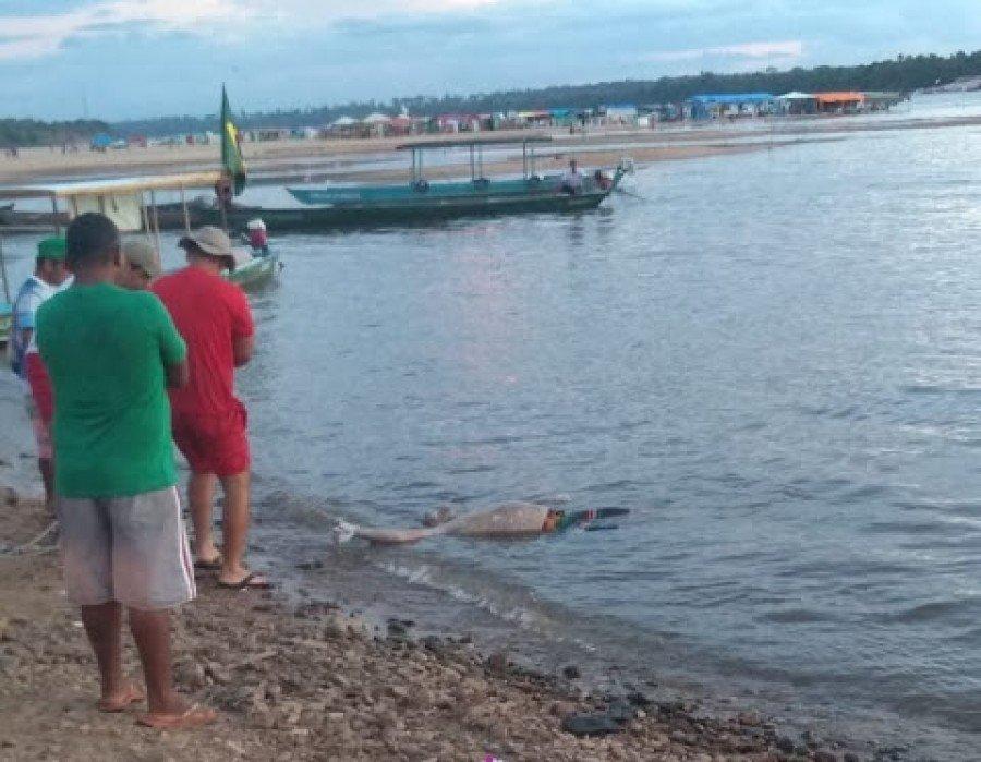 Após ser morto a facadas, a vítima foi jogada no Rio Tocantins