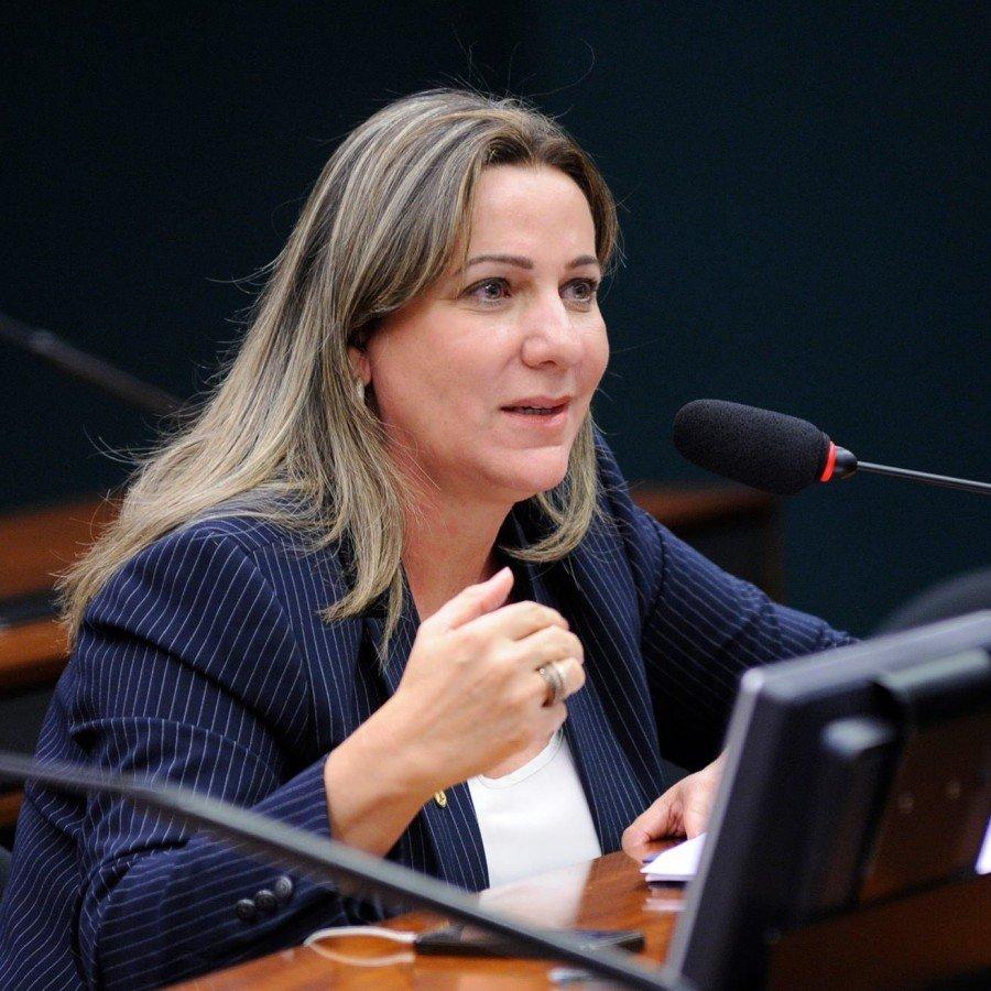 Deputada Dulce Miranda na missão oficial do Governo do Tocantins ao Japão